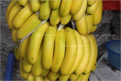 一根香蕉热量多少_香蕉热量情况分析!