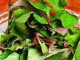 春季多吃这些野菜可防癌