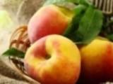 感冒了吃什么水果