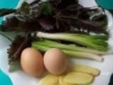 风寒感冒吃8种食物最有效