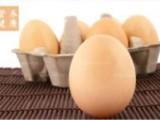 鹅蛋和鸡蛋的营养价值详细介绍