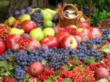 感冒吃什么水果比较好?这些深颜色的水果都有不错的疗效!