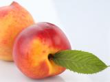 感冒能吃桃子吗?感冒了吃桃子会怎样?